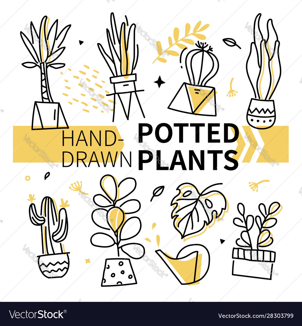 Hand-drawn potted plants collection - set of