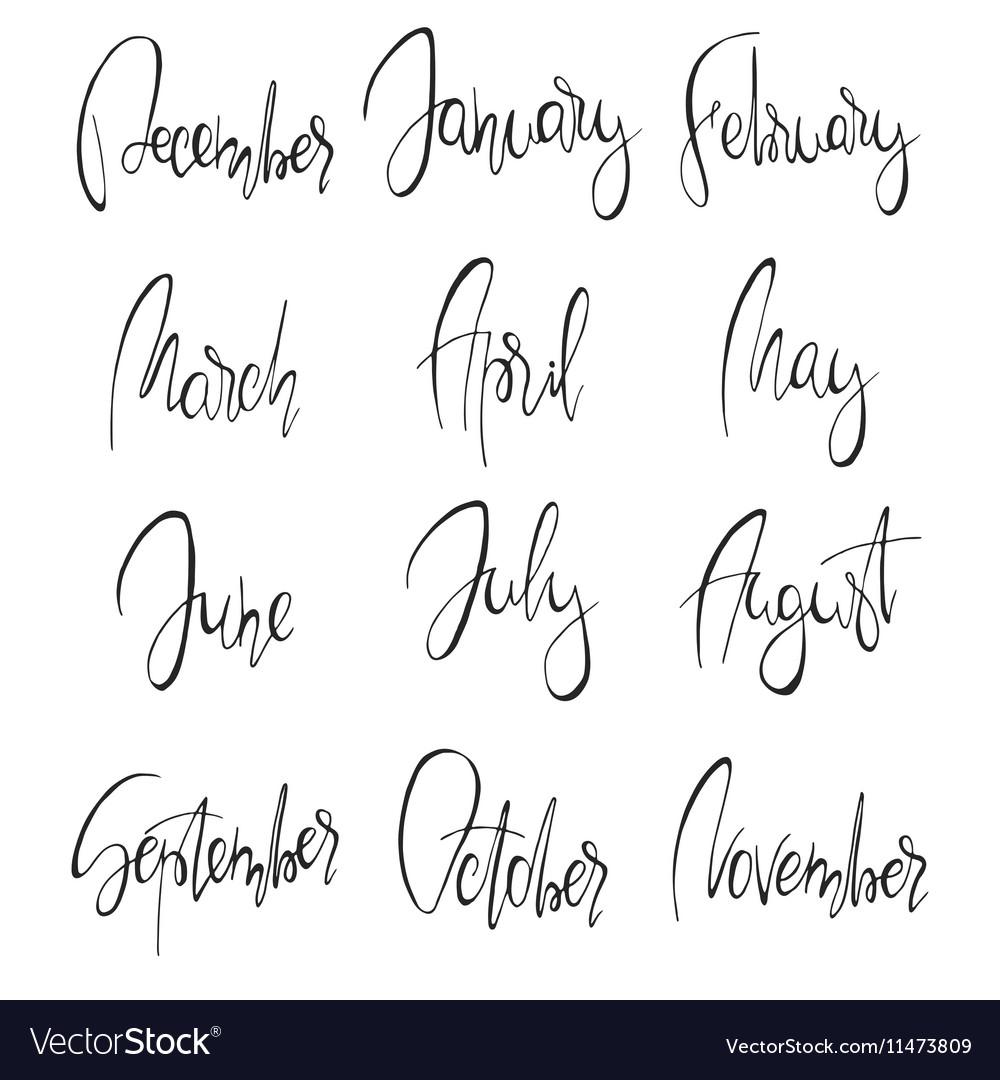 Months handwritten modern calligraphy Royalty Free Vector