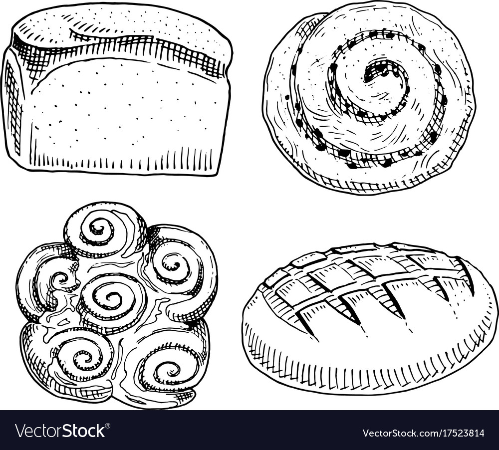 Bread and pastry donut long loaf sweet bun vector image