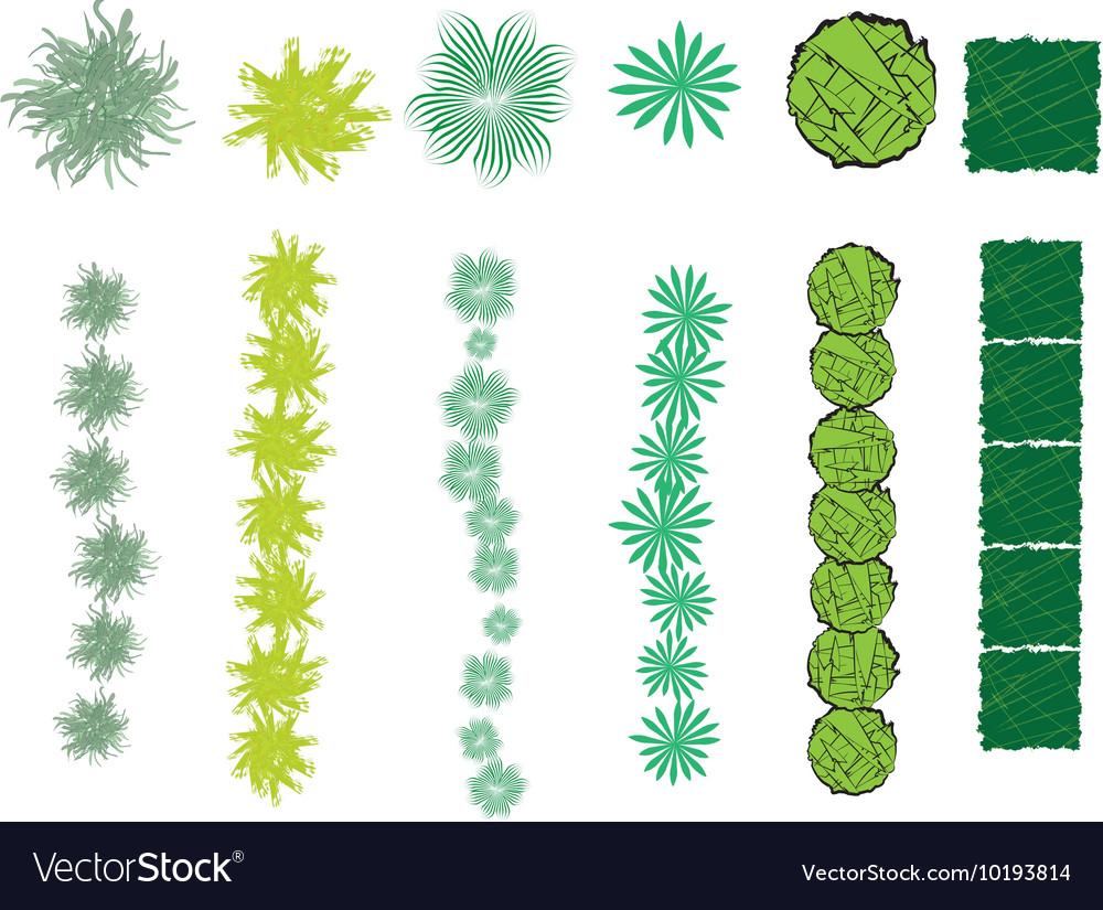 Set of bush symbols and brushes