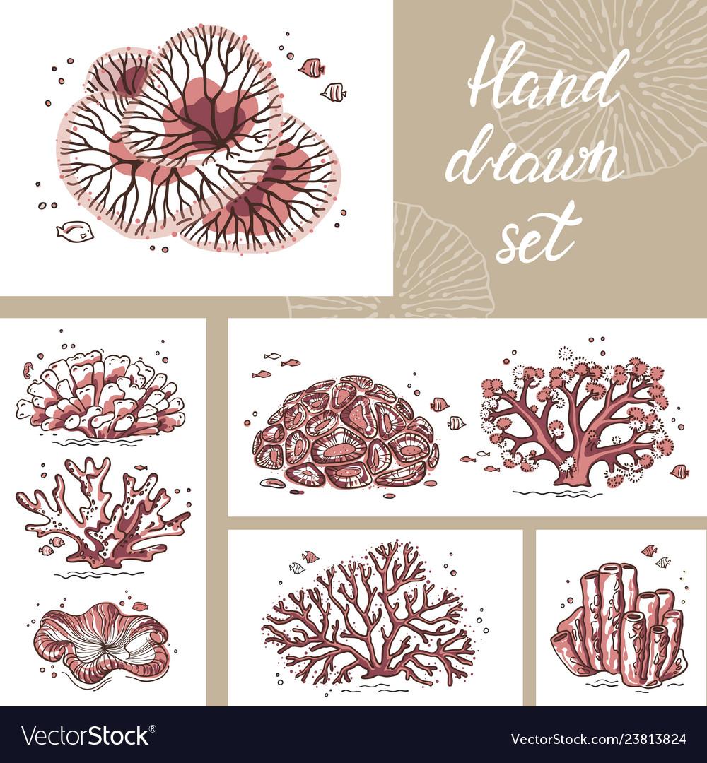 Beautiful coral card for print art shop circle