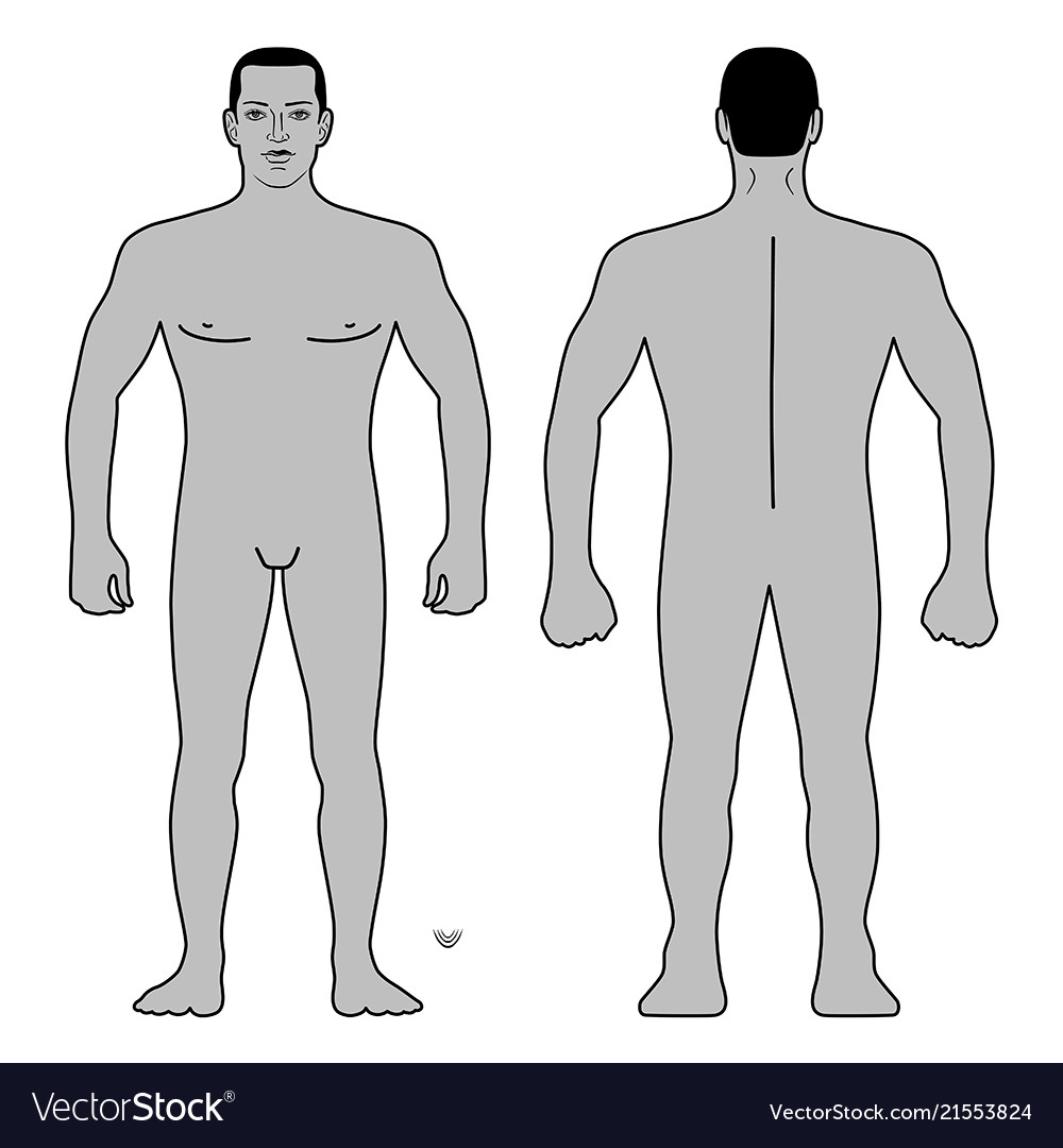 Fashion Man Body Full Length Template Figure Silho Vector Image