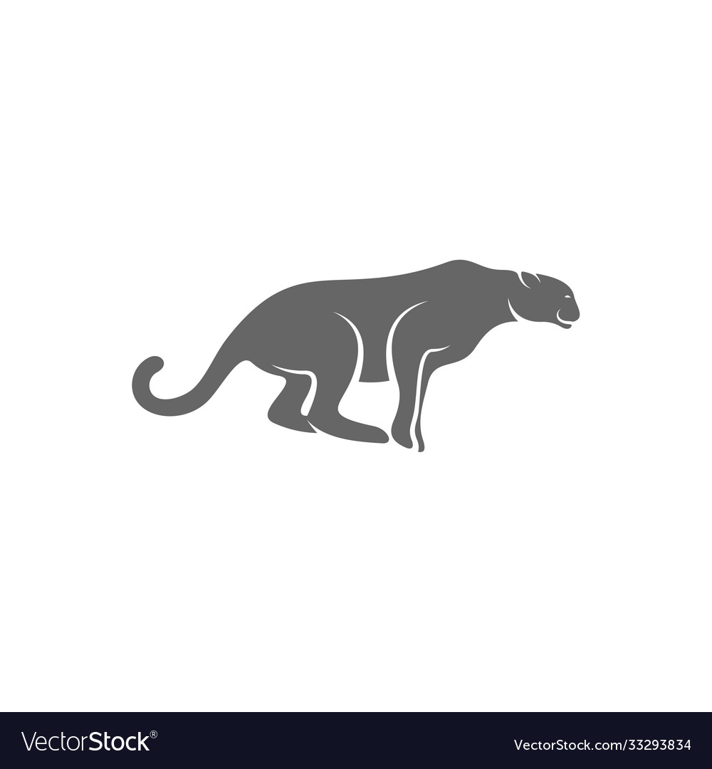 cheetah logo template royalty free vector image cheetah logo template royalty free vector image