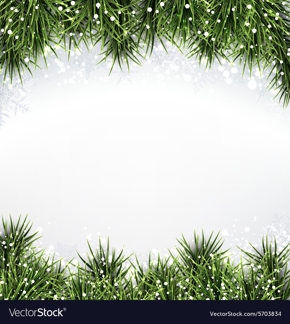 Christmas Backgrounds.Christmas Background With Spruce Branches