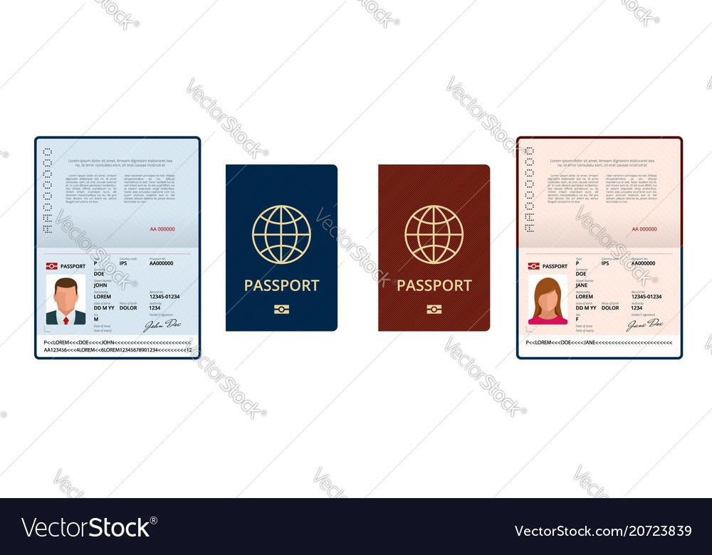 Blank open passport template international vector image