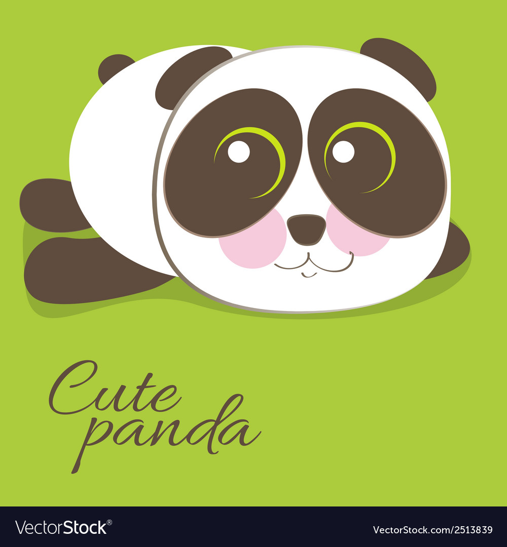 Cute young baby panda bear