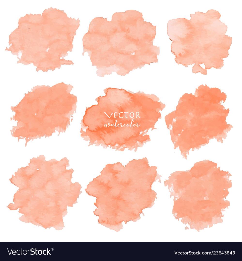 Orange watercolor set on white background