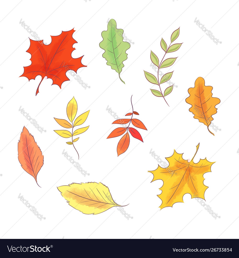 Set in style hand drawing autumn and leaves