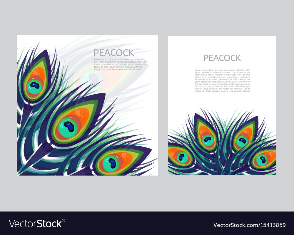 Set of creative multicolored letterhead template vector image