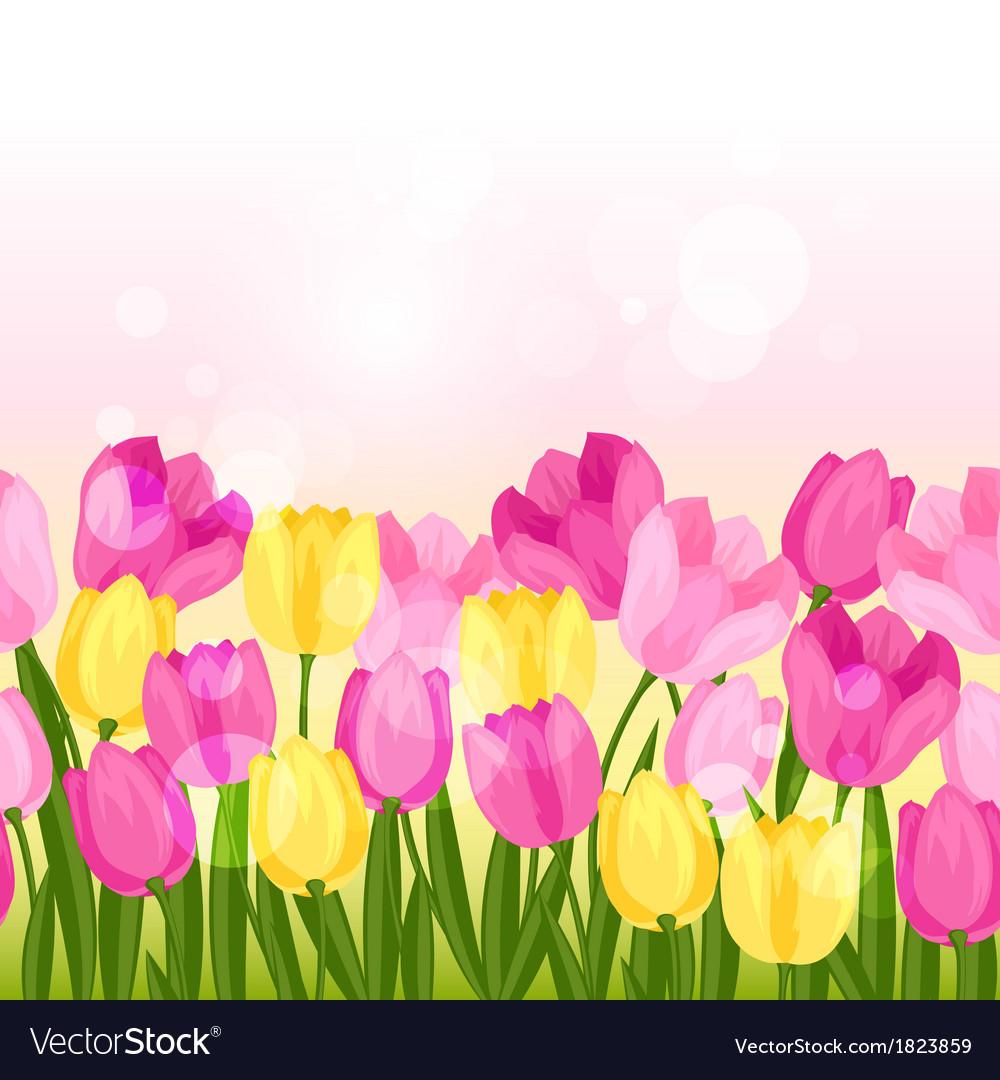 Spring flowers tulips seamless pattern horizontal vector image mightylinksfo