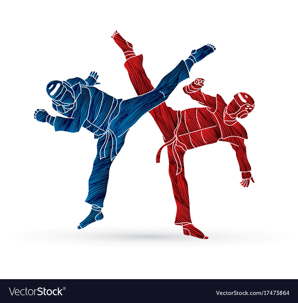 Taekwondo fighting
