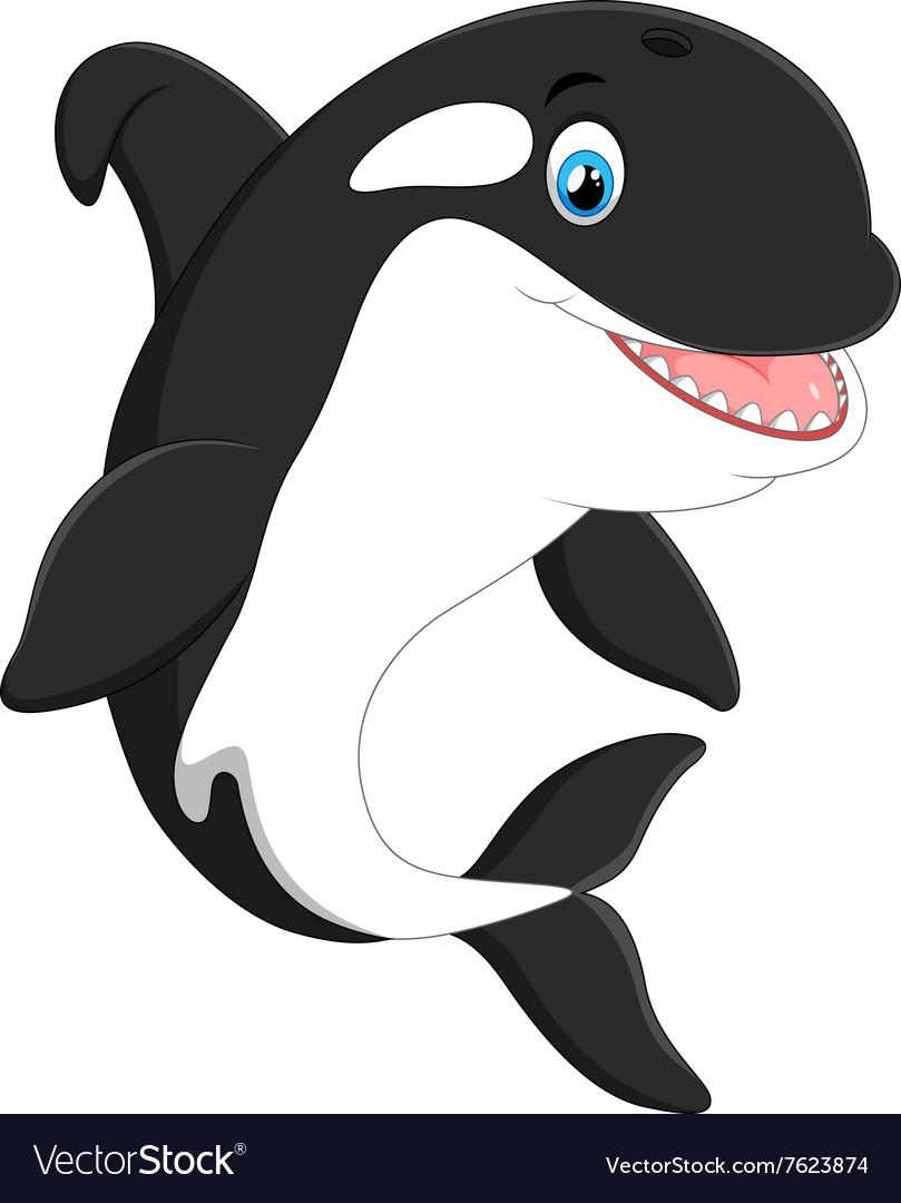 Cute killer whale cartoon