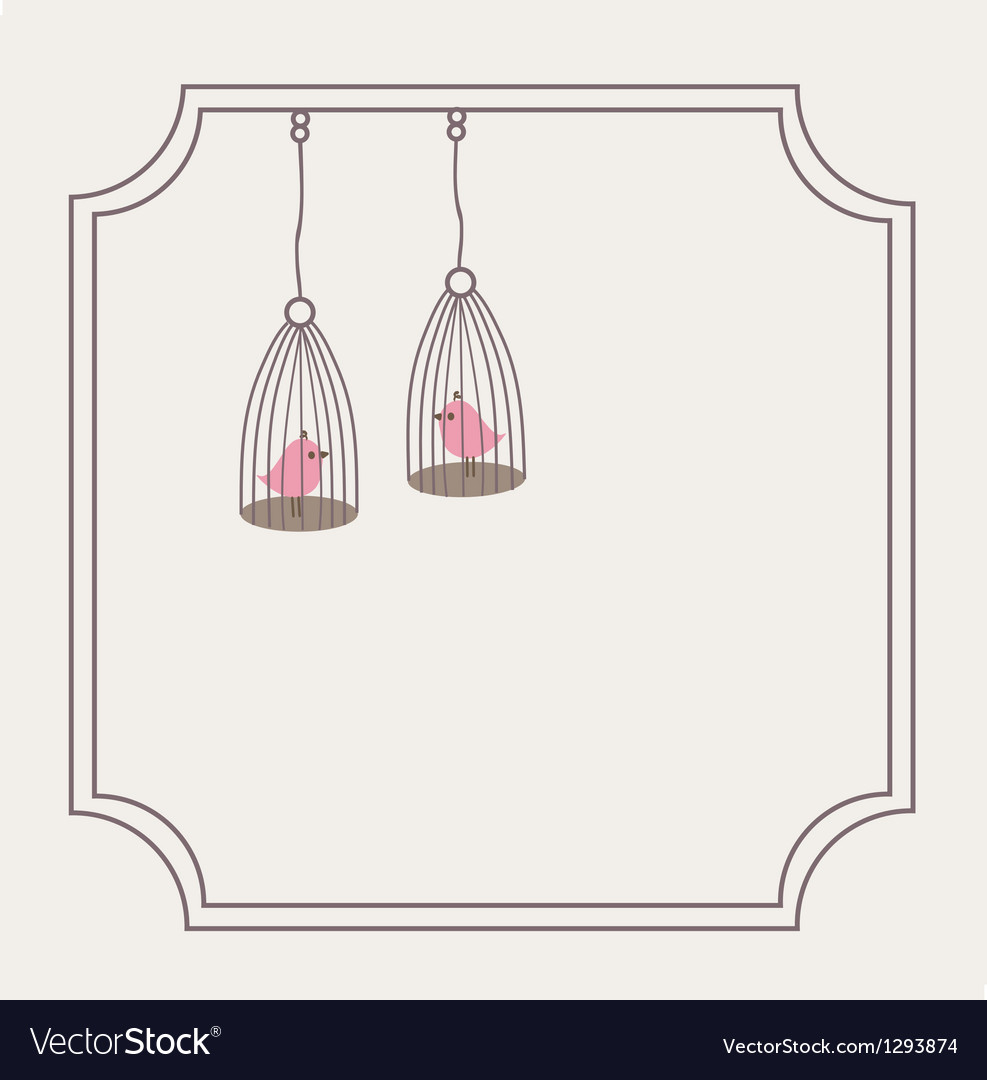 Cute love birds in birdcage