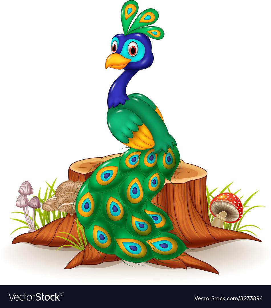 cartoon peacock on tree stump royalty free vector image vectorstock