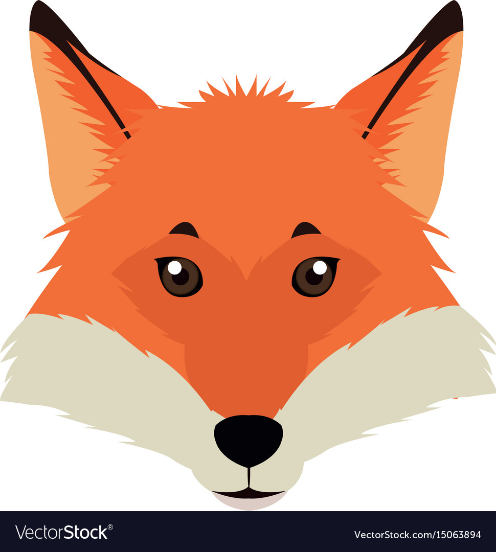 Fox mascot icon head and muzzle or snout