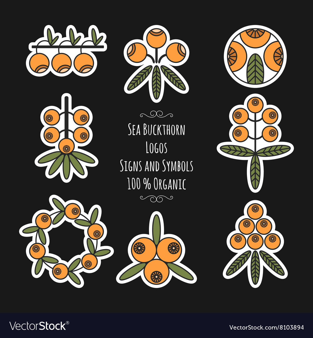 Set of sea buckthorn logos stickers on black