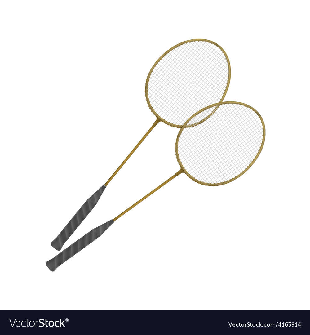 Badminton Rackets Isolated on White vector image