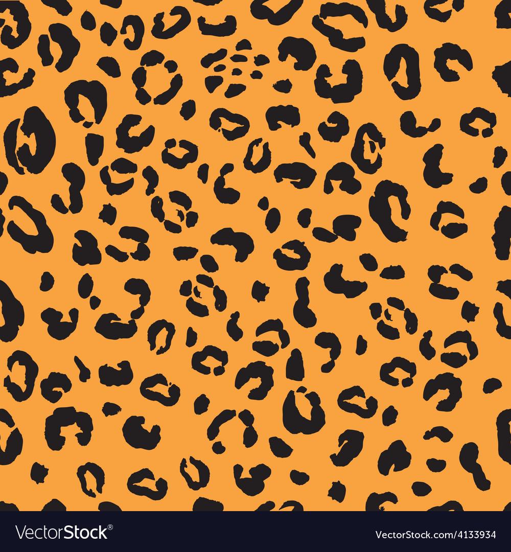 Snow leopard vector image