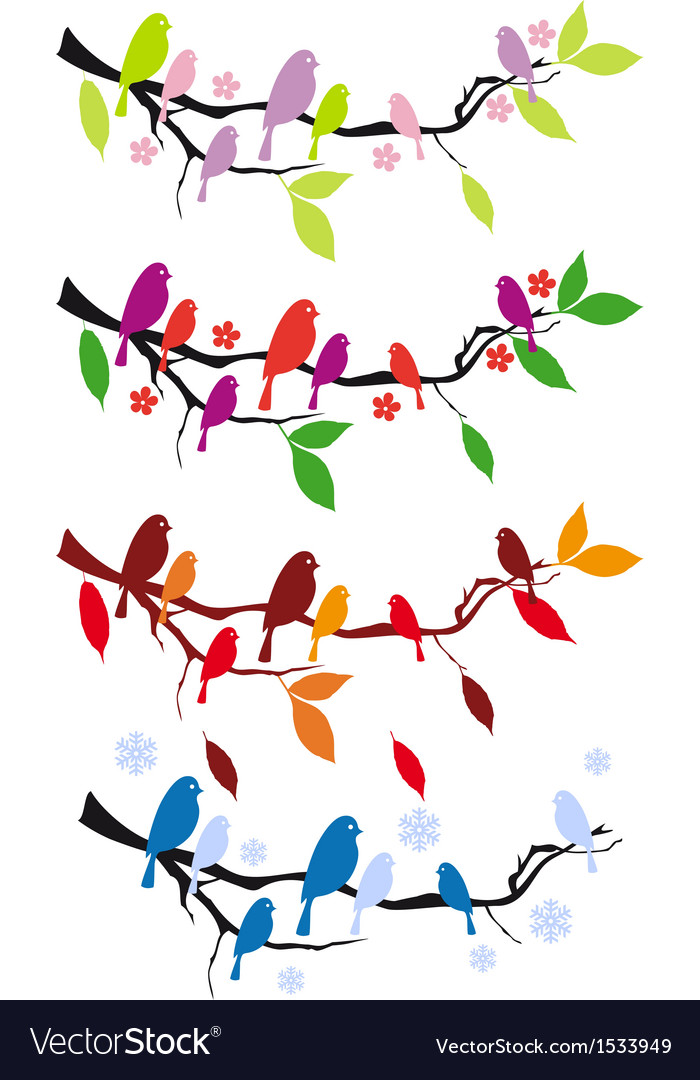 Birds on tree branch in four seasons vector image