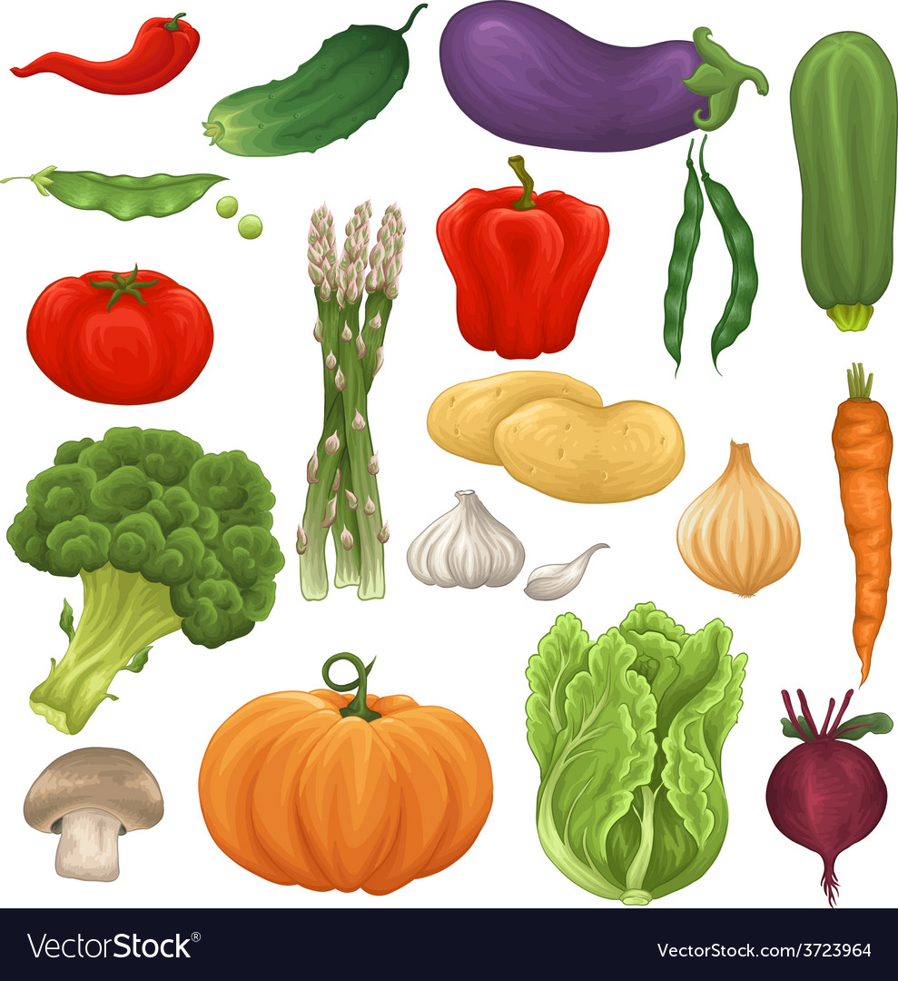 Collection of isolated vegetables