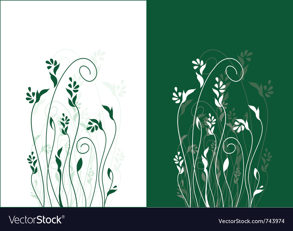 Floral background refined and beautiful ideally fo vector image