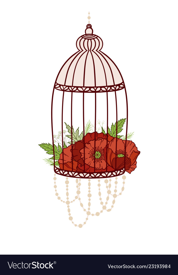 Bird cage with bloom poppies