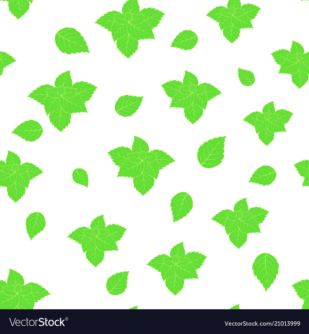 Pattern with mint on white