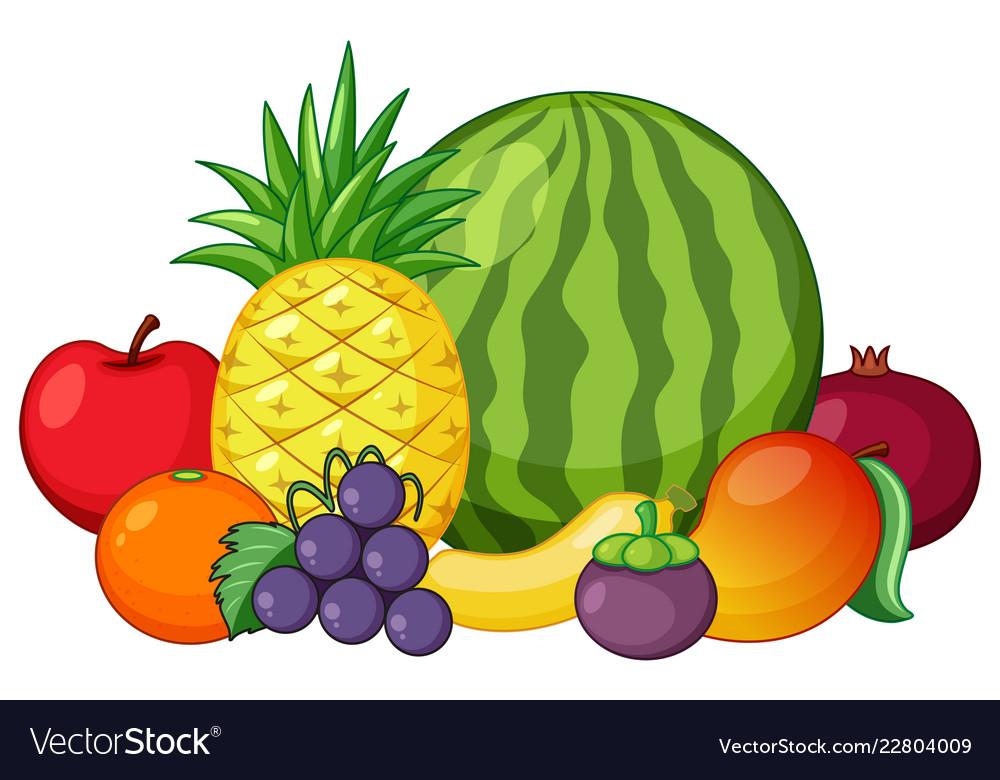 Fruit vector. Set of mixed