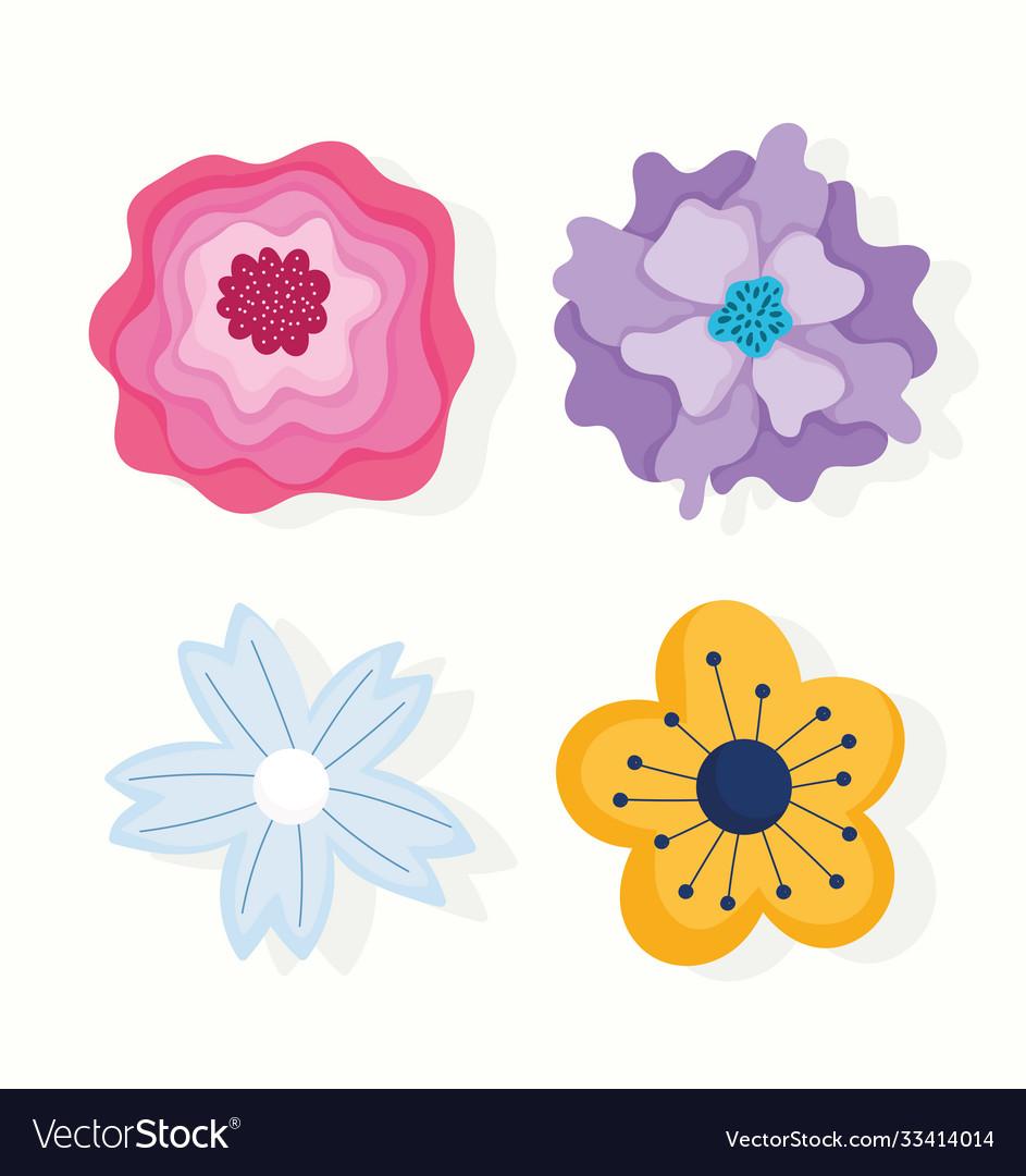 Different flowers petals nature decoration