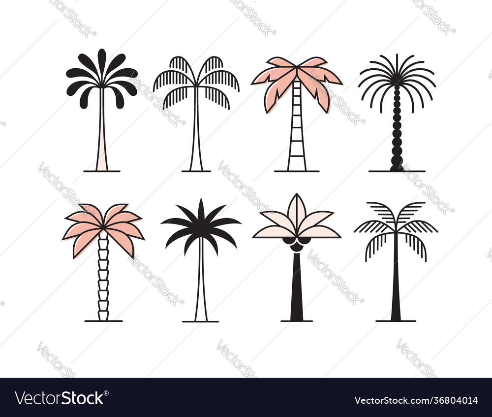 Graphic palm tree icon logo set