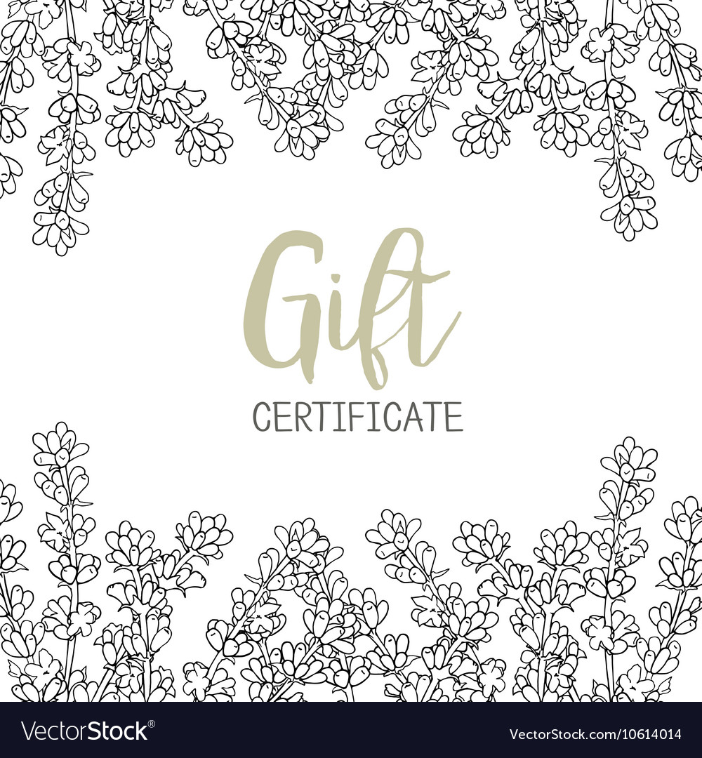 Lavender A Template Of The Gift Certificate For Vector Image