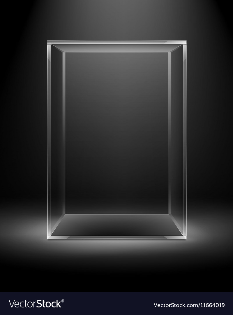 Glass Box Rectangle Cube Isolated on Dark Black vector image