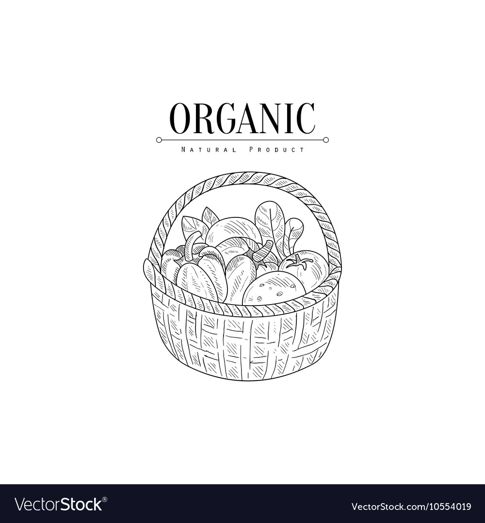Wicker Basket With Organic Vegetables Hand Drawn