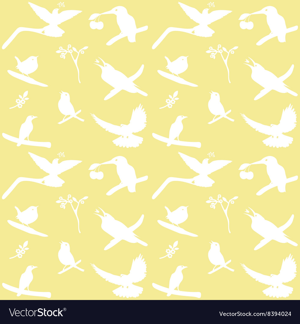 Collection of Bird Silhouettes