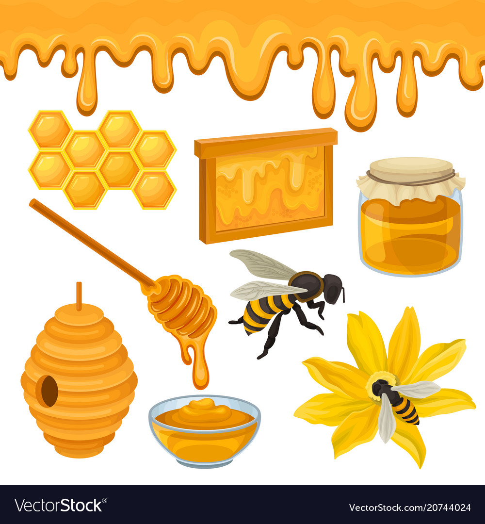 Flat set of icons related to honey