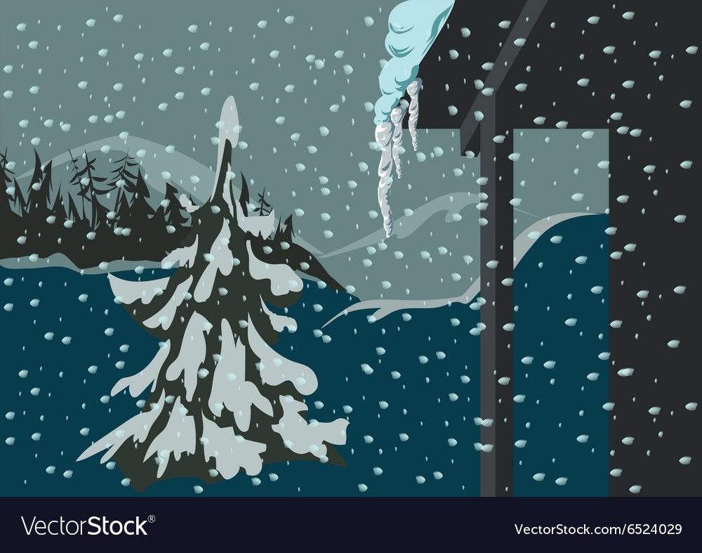 Spruce and snow
