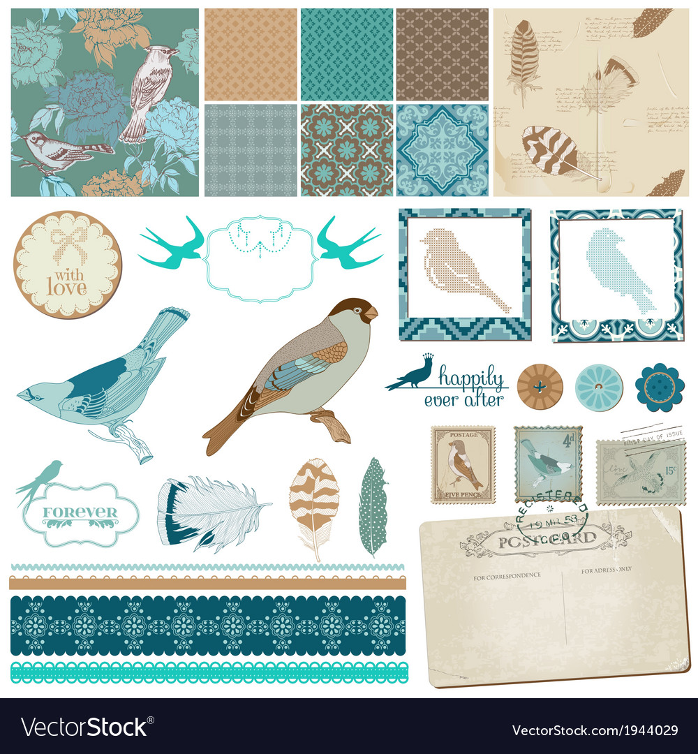 Vintage Birds and Feathers