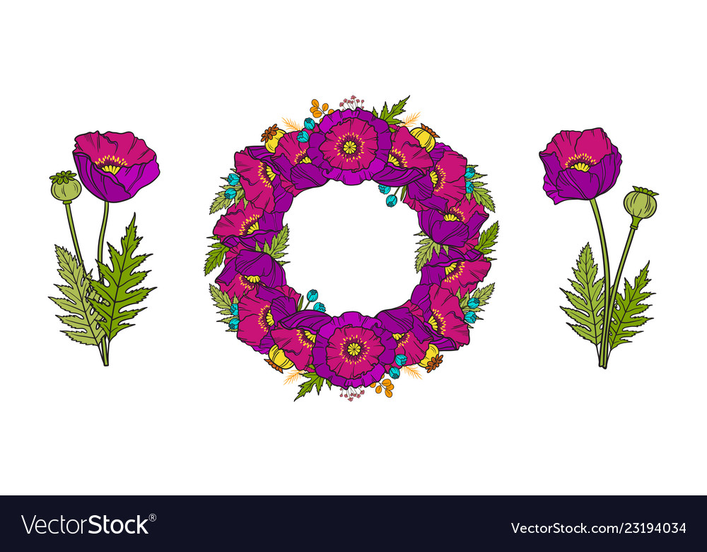 Set of poppy wreath and bouquets
