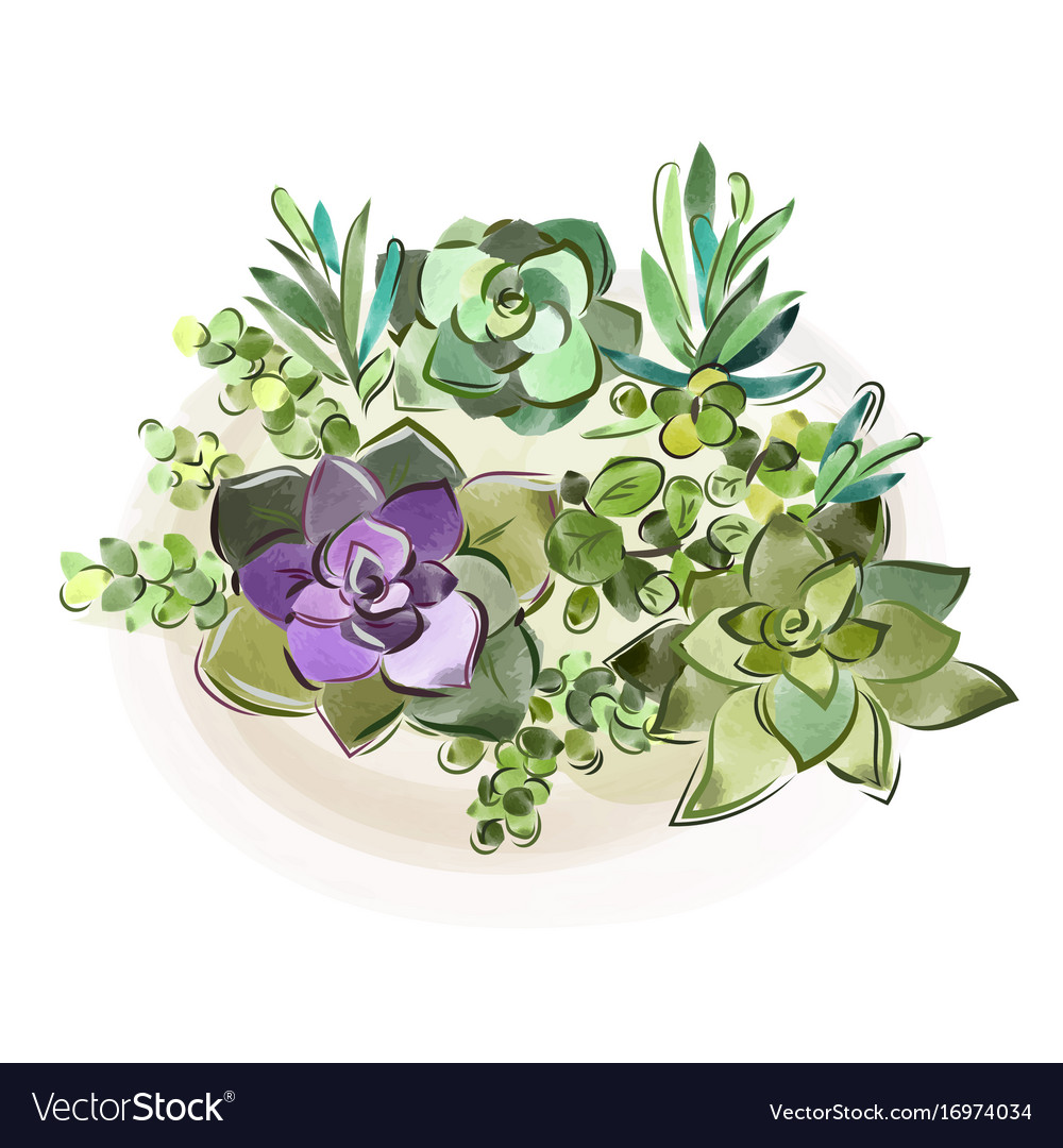 Watercolor collection of vector image