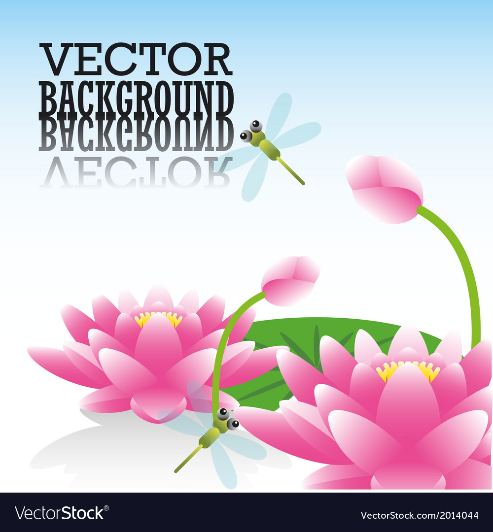 Lotus Flower And Dragonflies Royalty Free Vector Image