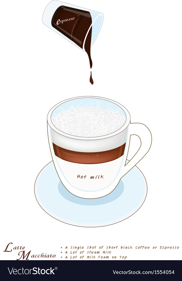 A Cup of Latte Macchiato on White Background vector image