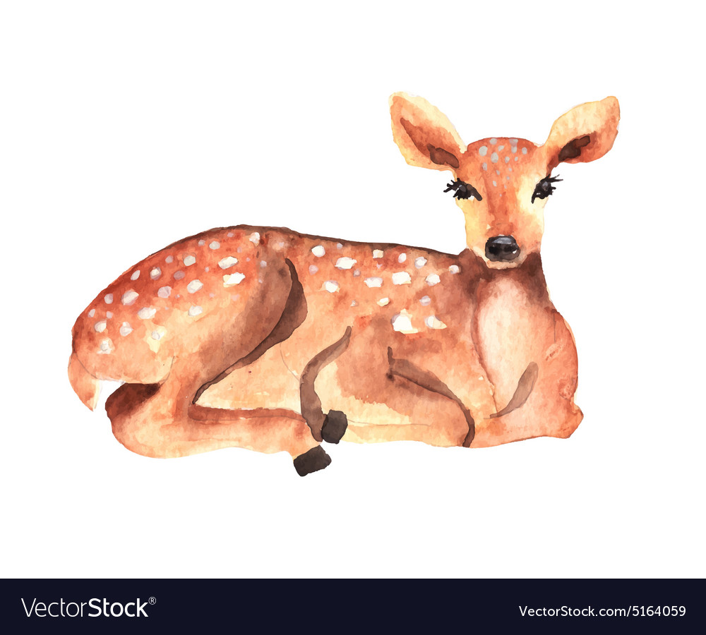 Watercolor deer