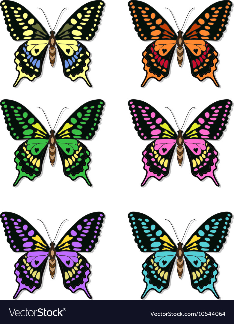 Set of multicolored butterflies on a white