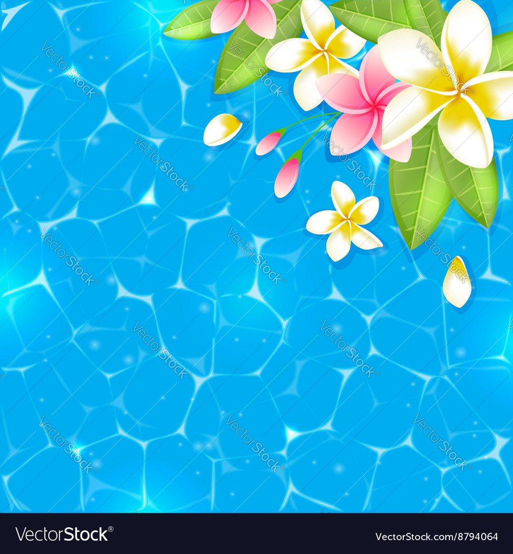 Tropical Flowers On A Blue Background Royalty Free Vector