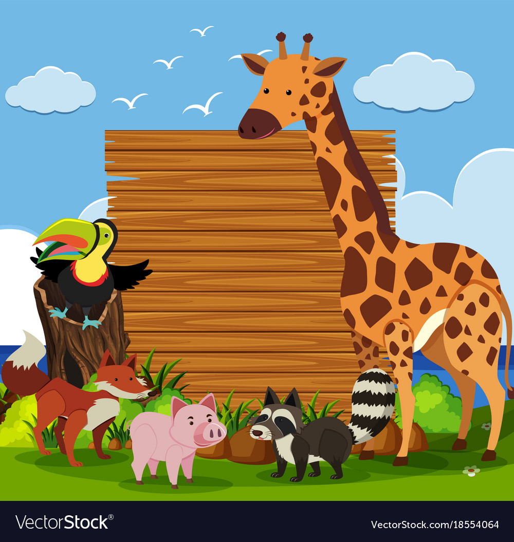 Wooden board template with wild animals in garden Vector Image
