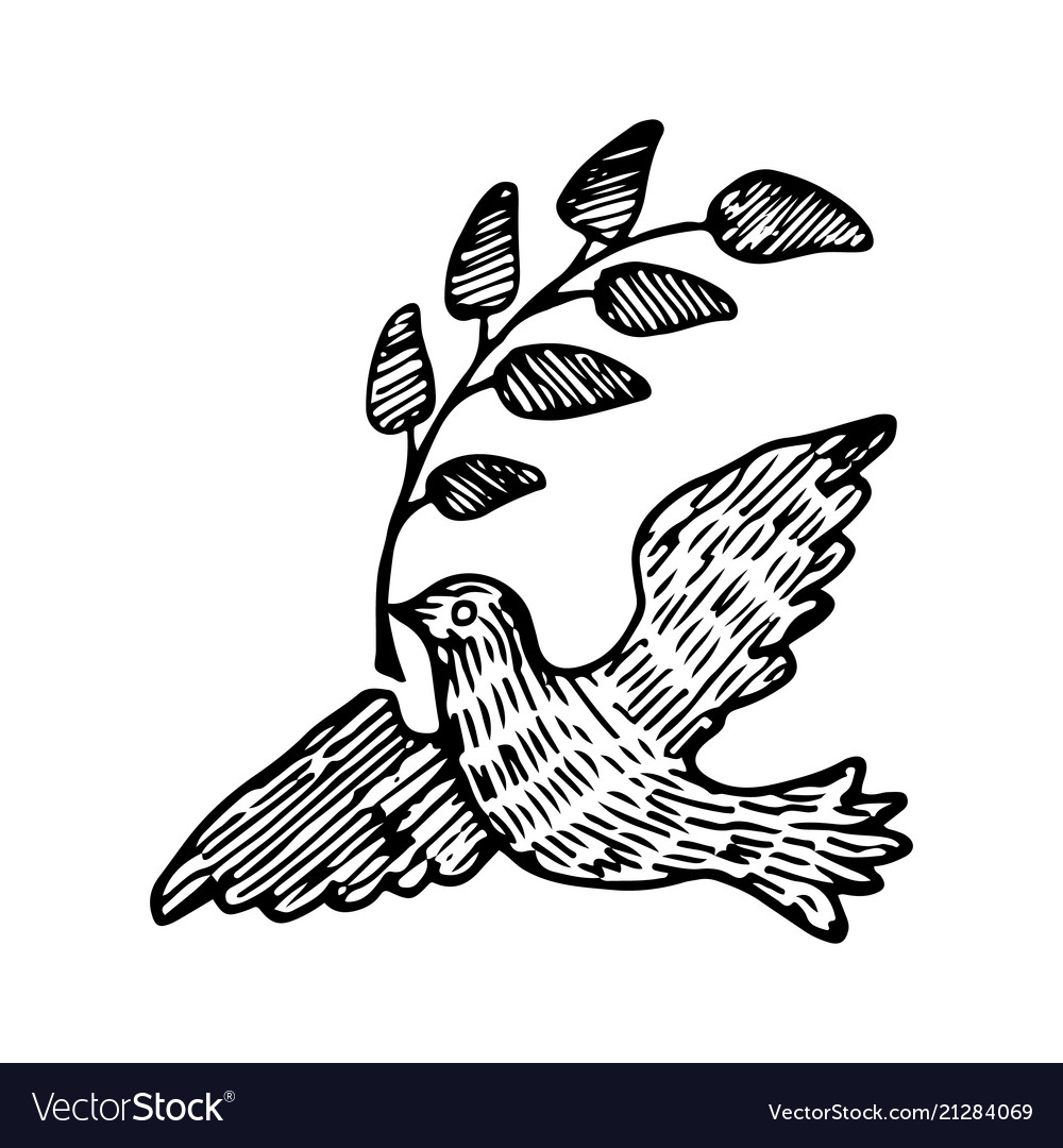 Dove of peace with a twig