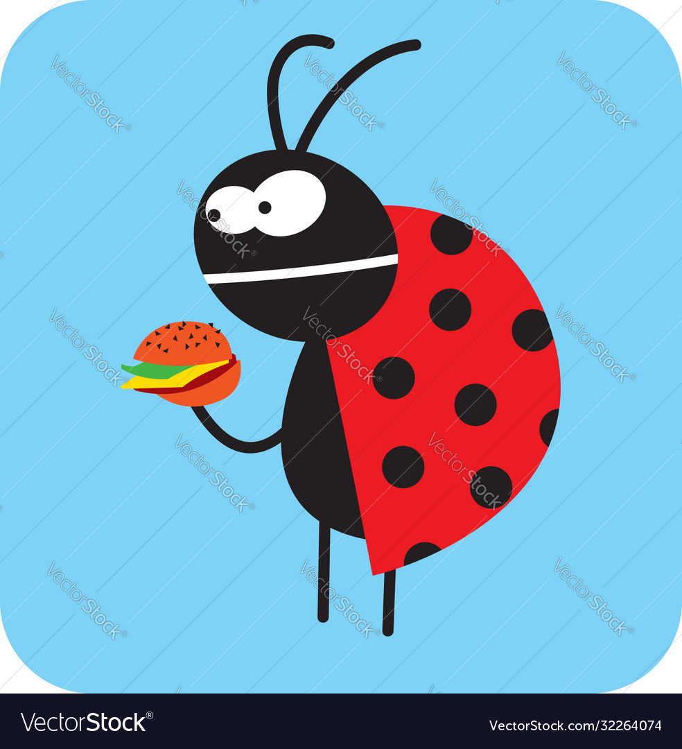 Beetle is going to eat tasteless fast food