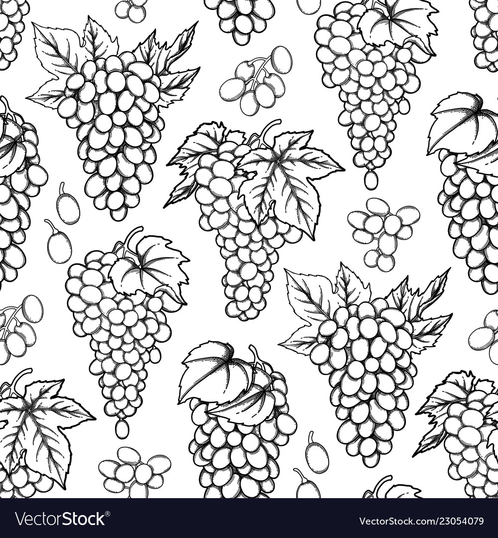 Graphic seamless pattern of grapes bunches