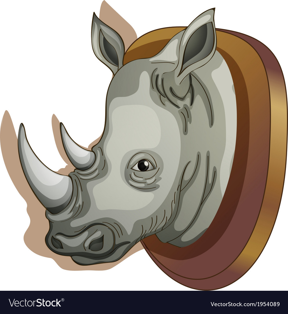 A head of a rhino