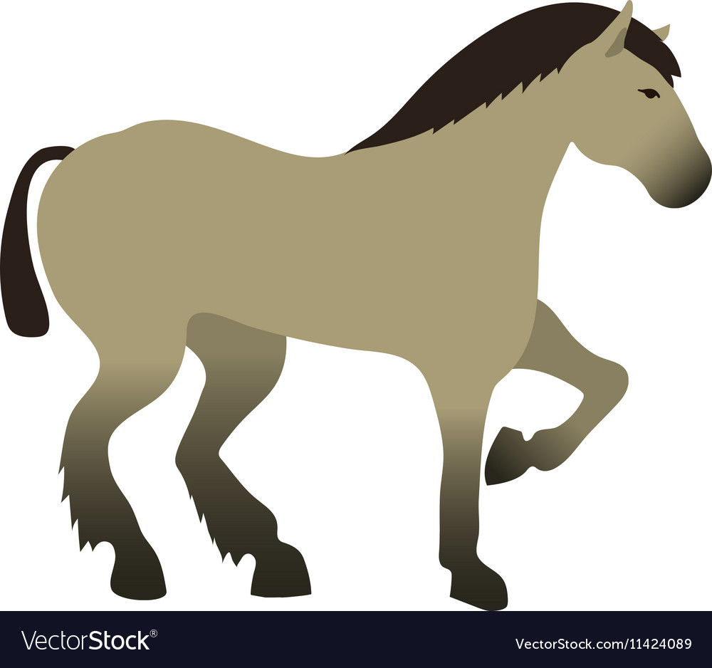 Horse isolated animal
